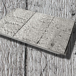 Interiérový obklad Kerradeco FB300, Wood Conctrete